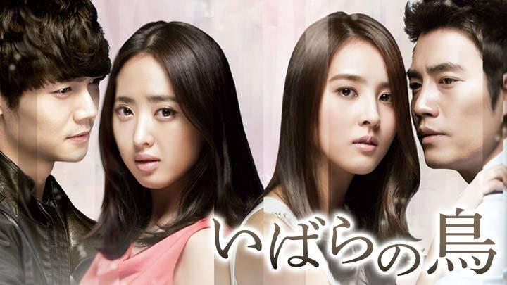 韓国ドラマ「いばらの鳥」のメインビジュアル
