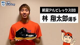 【Vol.32】林翔太郎選手/新潟アルビレックスBBのサムネイル