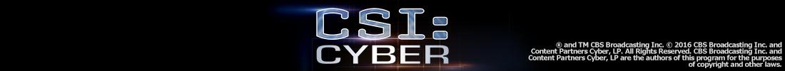 ドラマ「CSI:サイバー シーズン 1」メインビジュアル