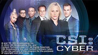 ドラマ「CSI:サイバー シーズン 1」のサムネイル