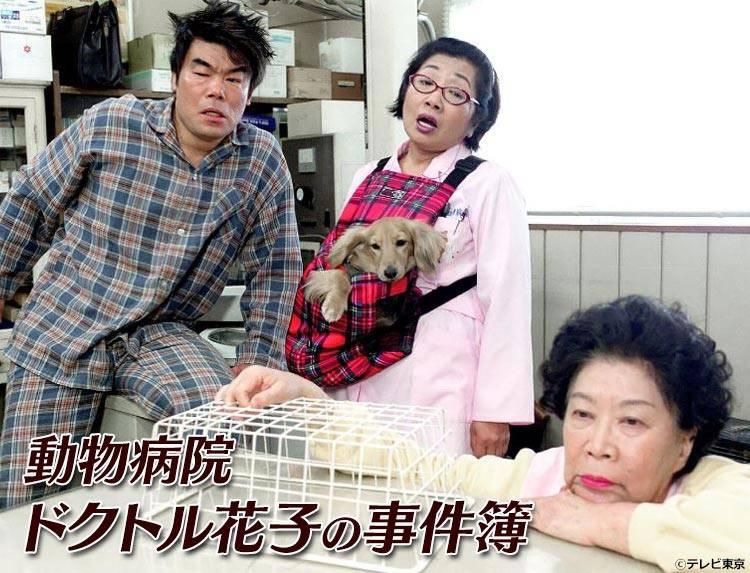 ドラマ「動物病院ドクトル花子の事件簿」のメインビジュアル