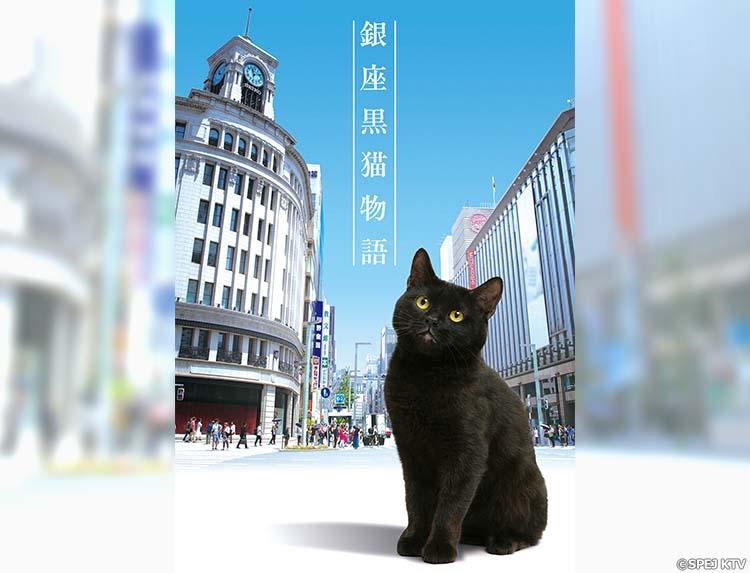 ドラマ「銀座黒猫物語」のメインビジュアル
