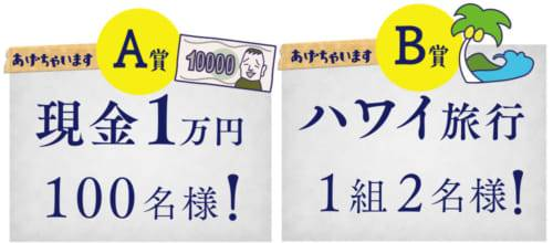 A賞 :現金1万円(100名様) B賞 :ハワイ旅行 4泊6日 (1組2名様)