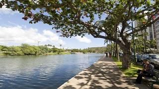 アラワイ運河周辺をお散歩しよう