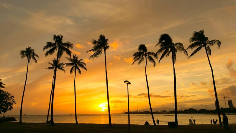 サンセット後にもお楽しみが! アラモアナ・ビーチ・パーク/Ala Moana Beach Park