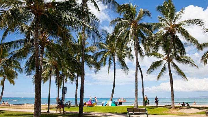 のんびりピクニックが楽しめるビーチパーク