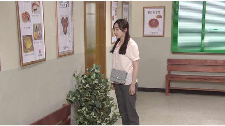 韓国ドラマ「私の心は花の雨」第42話