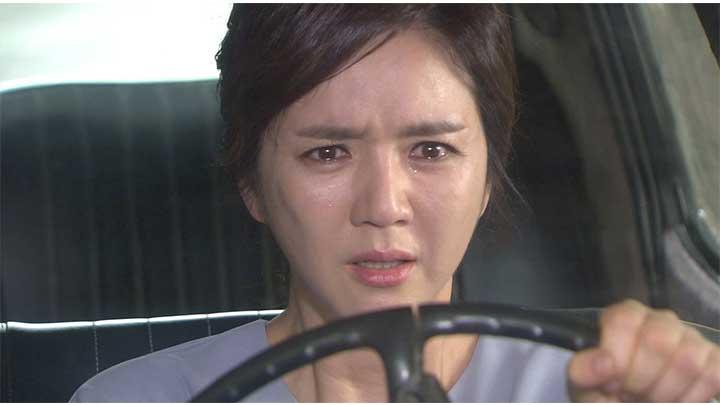 韓国ドラマ「私の心は花の雨」第64話【終】