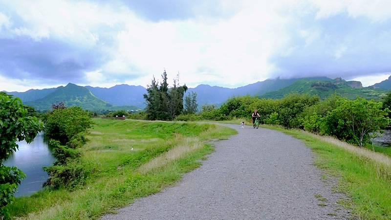 カワイヌイ湿地