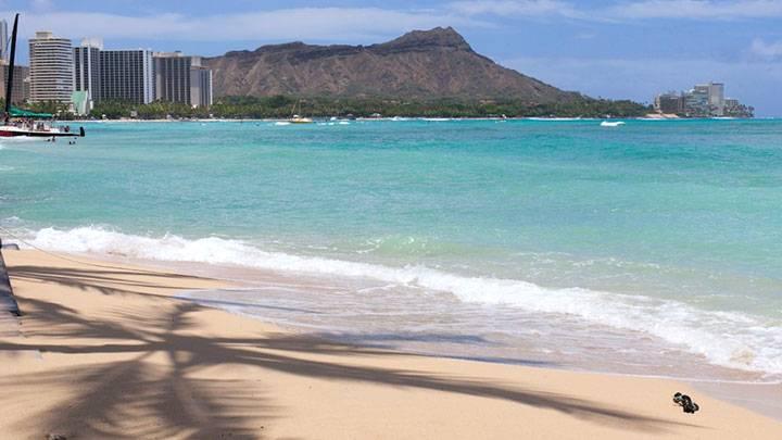 日本の方が暑い!? 南の島ハワイ