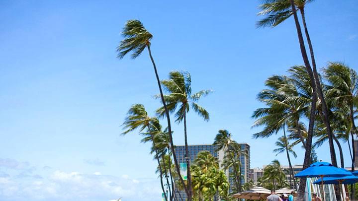 乾季と雨季のあるハワイ。夏の乾季編