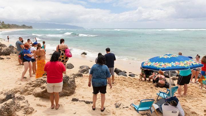ウミガメが間近に! ラニアケア・ビーチ