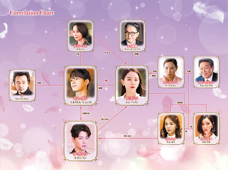 韓国ドラマ「ただひとつの愛」の相関図