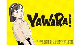 YAWARA!<HDリマスター版>のサムネイル